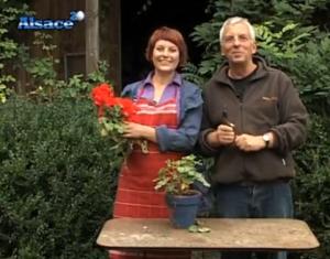 Tv alsace mission t l jardinage alsace20 for Jardin entretien jean paul traineau