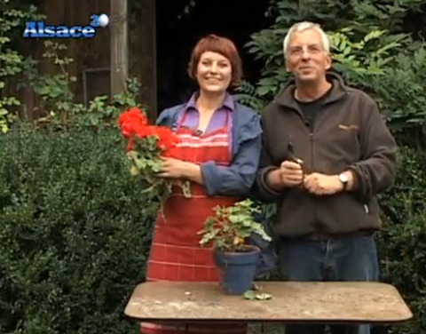 Emission de jardinage versailles design for Jardin entretien jean paul traineau