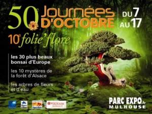 Journées d'Octobre & Folie'flore 2010