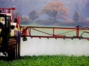 En 2021, l'eau de la nappe phréatique sera potable en Alsace