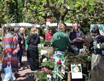 Marché aux plantes à Mulhouse en avril
