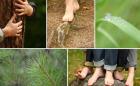 sentier pieds nus lac blanc alsace