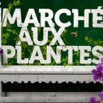 Zoo de Mulhouse : Marché aux plantes 2015