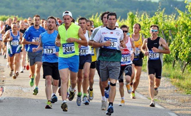 Trophée de la vigneronne 2015 Colmar