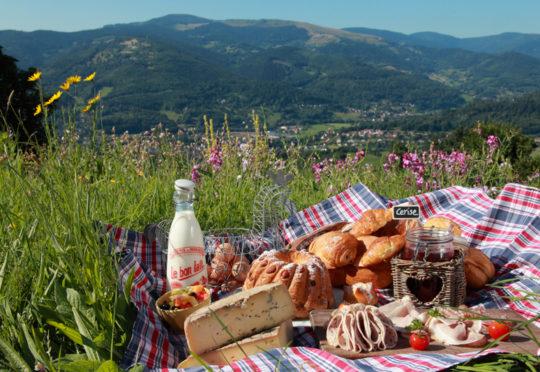 Pique-nique en Alsace avec vue sur montagne